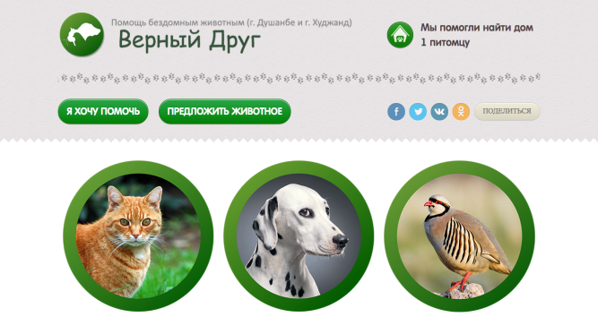 Помощи бездомным животным - Душанбе - Худжанд
